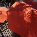 New Room & Board umbrellas in a cheery orange