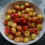 Ranier Cherries, Memorial Day Weekend 2015