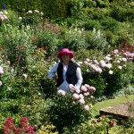 Touring the Gertrude Jekyll designed garden at Upton Grey